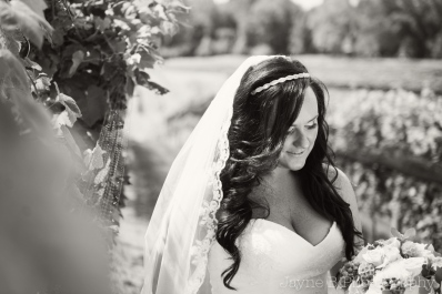 KM_CENITAYINYARD_WEDDING_SP-1021