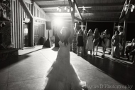 KM_CENITAYINYARD_WEDDING_SP-1119